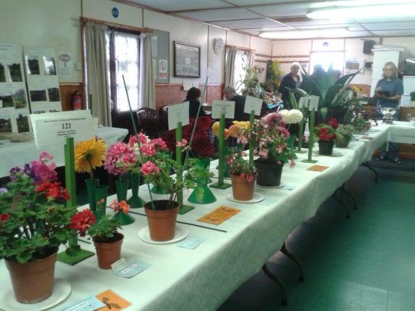 BAF Horticultural Show 2016