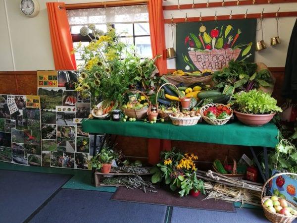 The BAF Horticultural Show 2018
